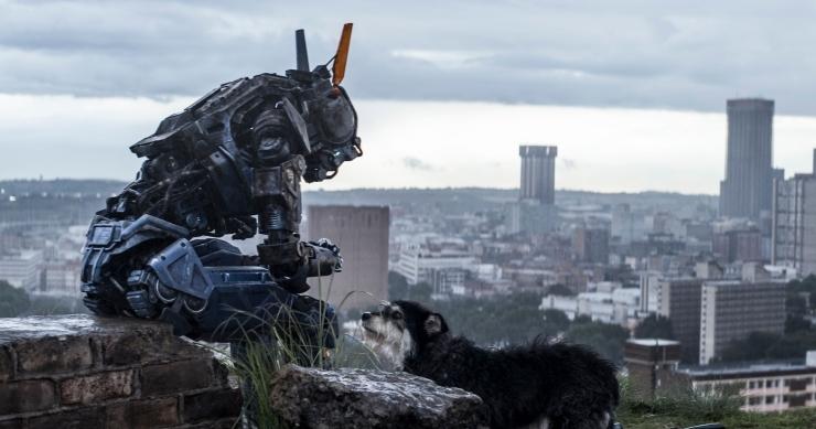 机器人会消灭人类统治世界?你TM是在逗我么3