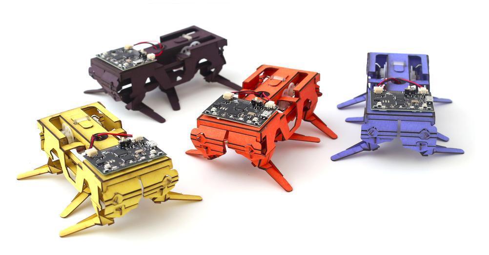 萌萌哒的Dash昆虫机器人,让孩子边玩边成才 1