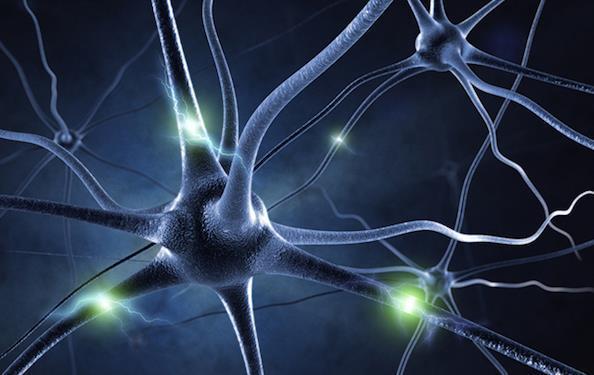 无处不在的人工神经网络:机器人拥有意识的关键