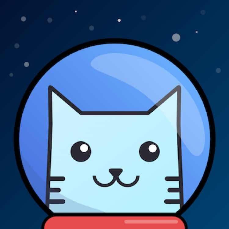 Apollo Box:一只戴着宇航帽的猫,一家在国外启程的AR电商