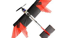 科学家研发新型无人机,有羽毛翅膀可快速飞行