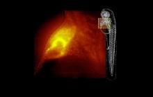 这款名为4D-Nature的显微镜,将对细胞信息进行四维图像呈现