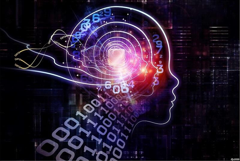 人民网三评智能算法,技术又一次为平台背了锅