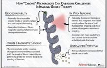 可被生物降解的纳米机器人,能带着抗癌药物直接进入你的体内