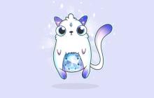 """""""以太猫""""将于大年初一登录中国,中文名为""""迷恋猫"""""""
