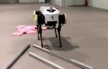"""浙江大学发布四足机器人""""绝影"""",爬坡踏雪稳定性令人惊艳"""