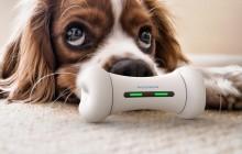 Cheerble Studio推出智能骨头Wickerbone,可以与宠物进行互动