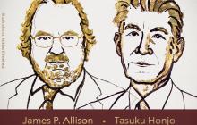 2018年诺贝尔生理或医学奖揭晓,来自美国和日本的科学家获奖
