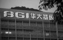 """华大基因回复深交所:""""14万中国人基因大数据""""项目与外方机构无关"""