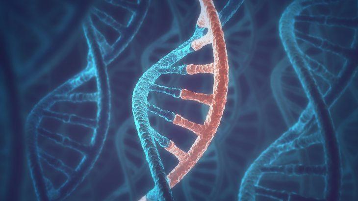 RNA与DNA曾是一体,生命起源论或被颠覆